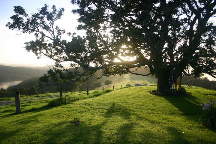 Kilfeacle Farm Cottage, Milton - Milton - บ้าน