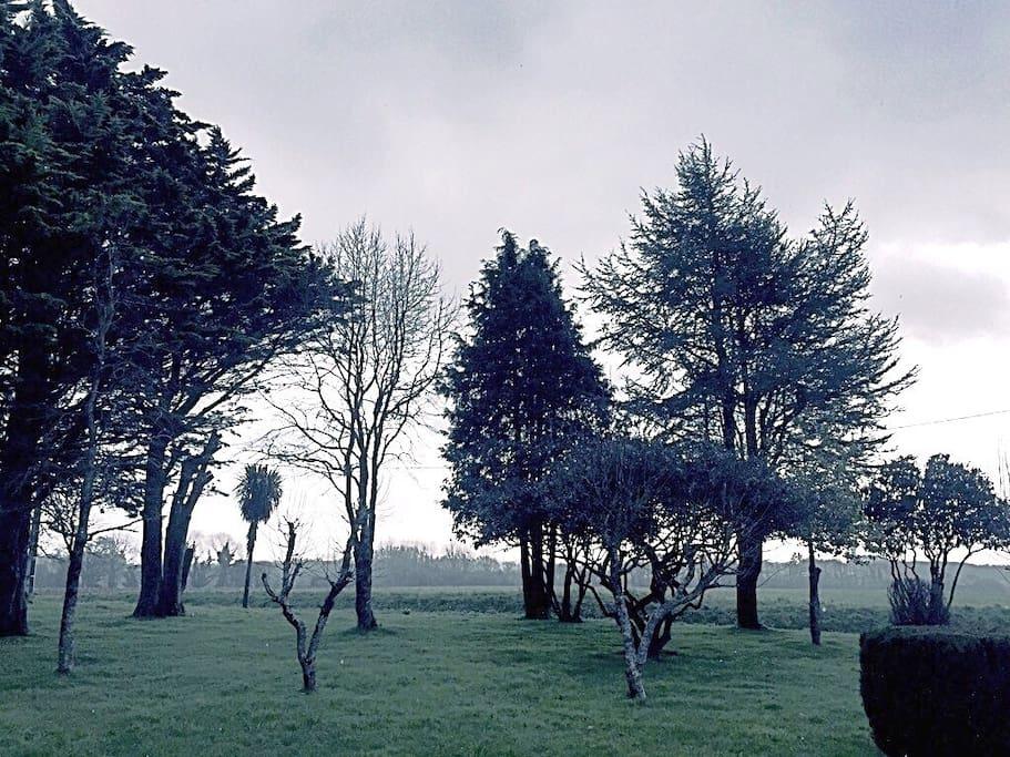 Le parc au milieu des champs