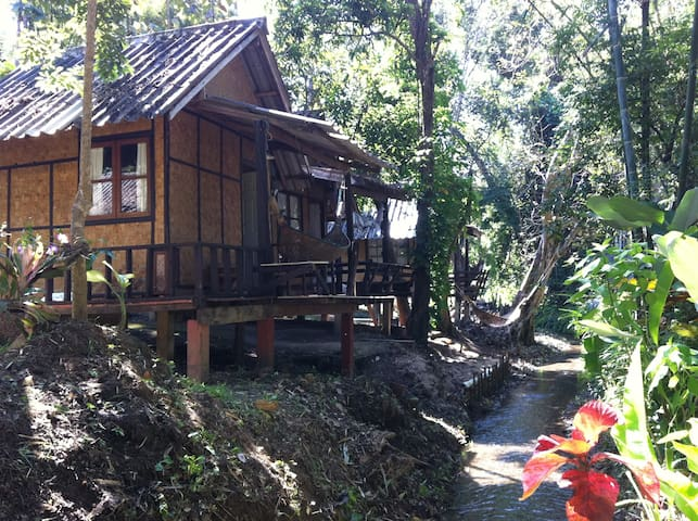 Bamboo stream view - Pai - 小木屋