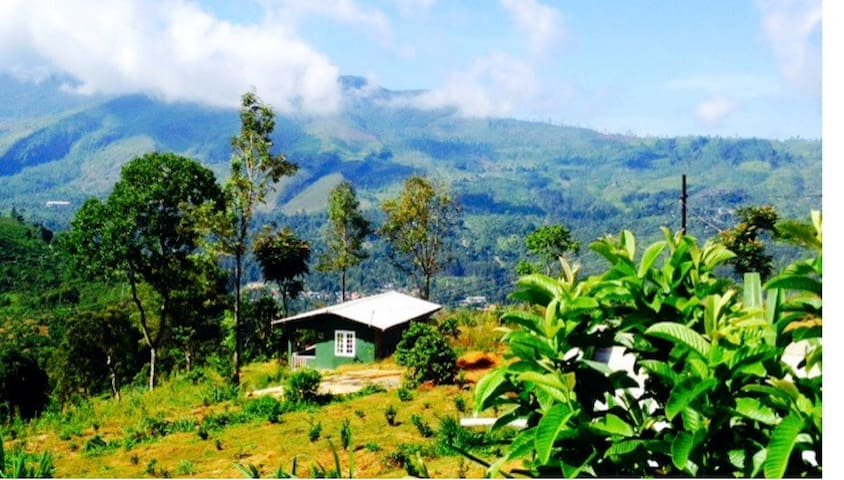 Charming 2br cottage on Tea Estate - Pundaluoya - Huis