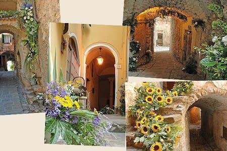 Casa Vacanze Bordighera - Vallebona - Apartamento