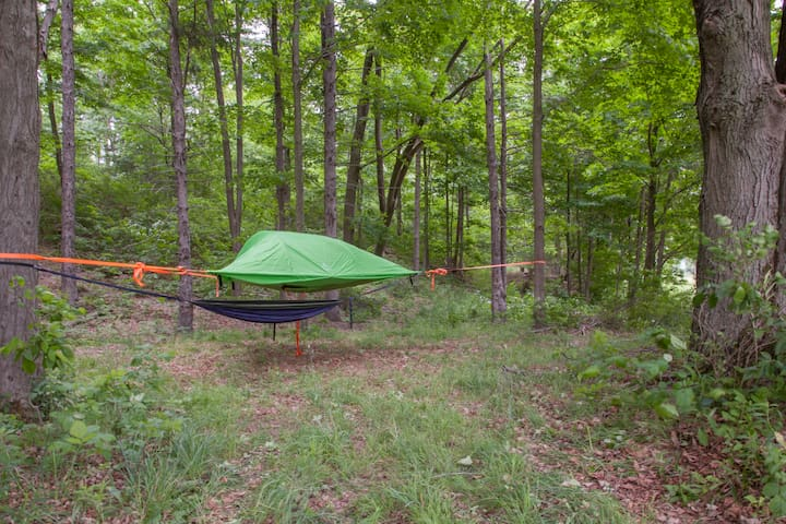 Tentsile TREETENT Great Amenities Swim Hike Alpaca - Brooktondale - Telt