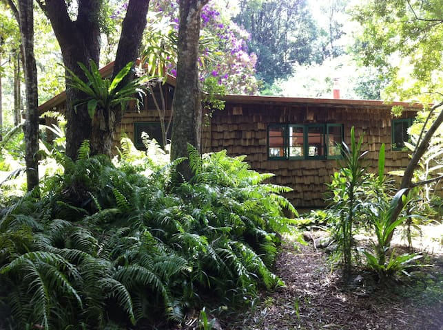 Byron Bay Hinterland; Private Organic Cottage - Goonengerry - Casa
