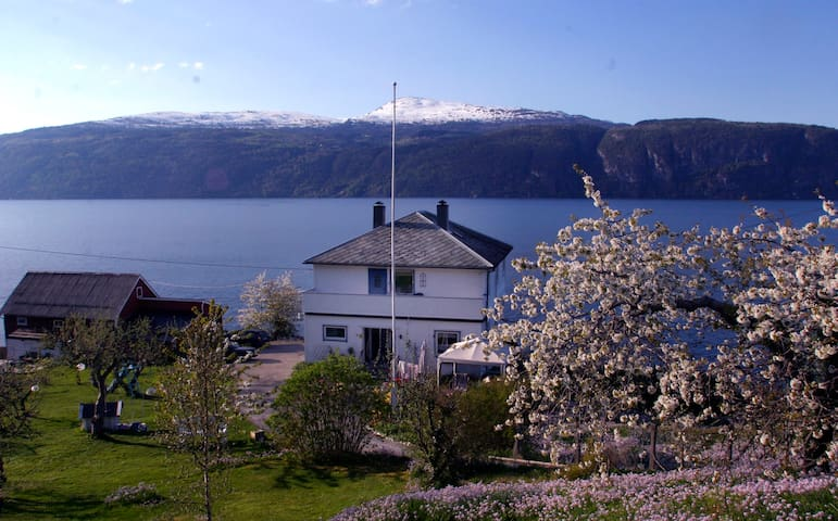 Much loved house by the fjord - Utvik - Dom