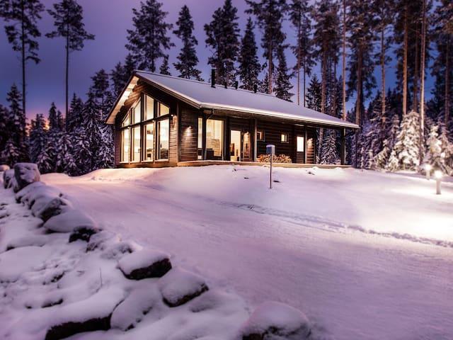 Villa Polaris luxury chalet for 11