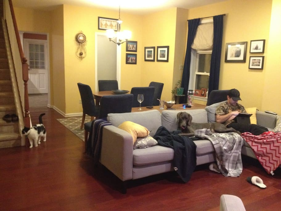 Dining room. Dog and Husband won't be there during your stay, but the cat will.