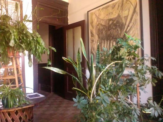 Furnished privte room
