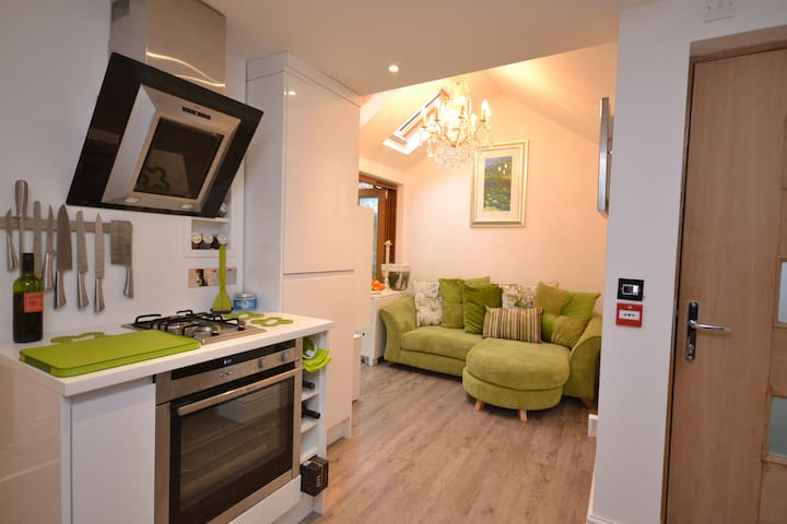 Modern centrally located apartment - Kingsbridge - Daire