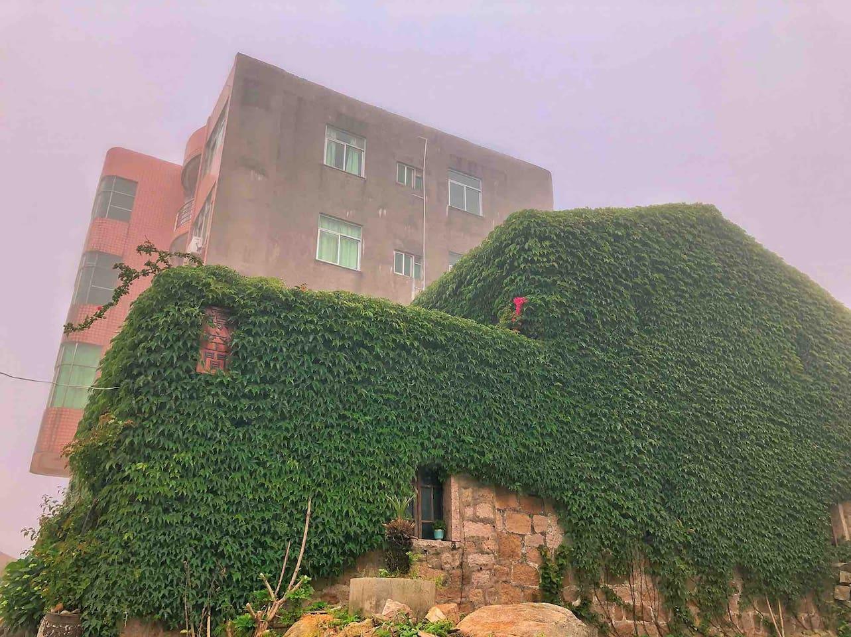 高楼是飘宿,前面是平潭绿色石头厝