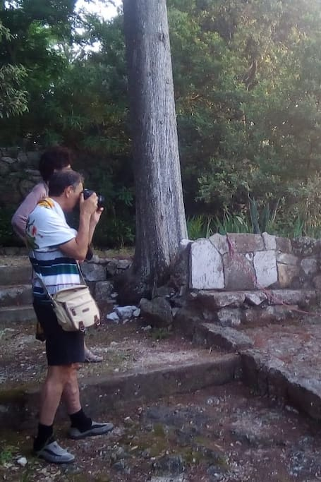 Capturing the nature Landscape