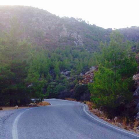 Road to Livadas