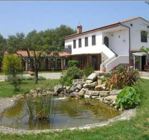 """Kriò Casa Vacanza """"Calendula"""" - Capitello - Apartamento"""