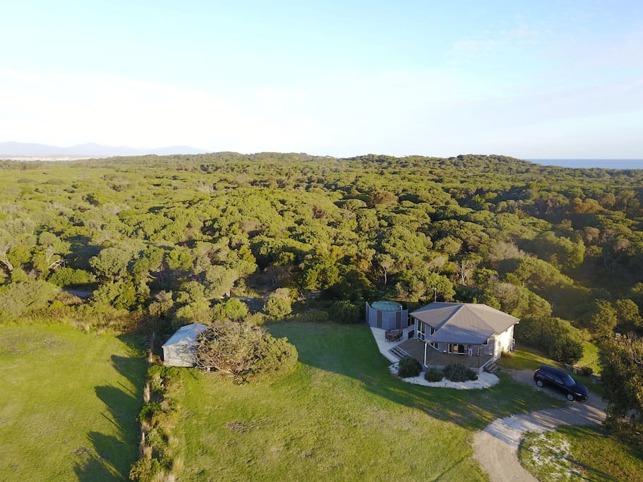 Drone aerial view of banksia