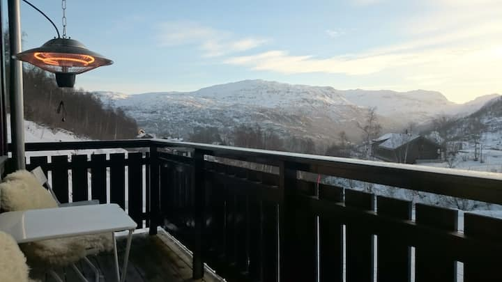 Holiday apartment in Røldal whit great location