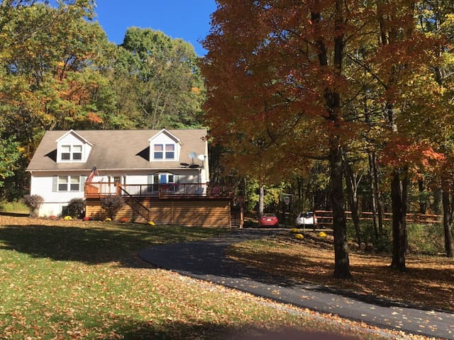 Comfortable cape in country setting - Milford - House