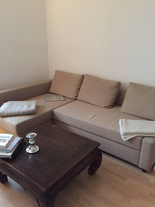Das Wohn-/Schlafzimmer mit gemütlicher Schlafcoutch