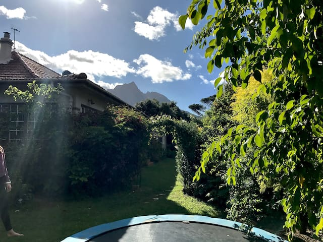 Spacious Garden Suite Rondebosch Golden Mile - Cape Town - Flat