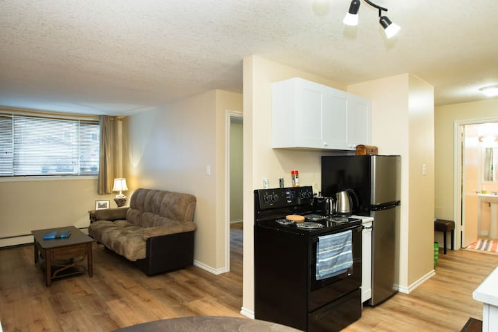 Entire Condo, Central Location - Edmonton - Apartment