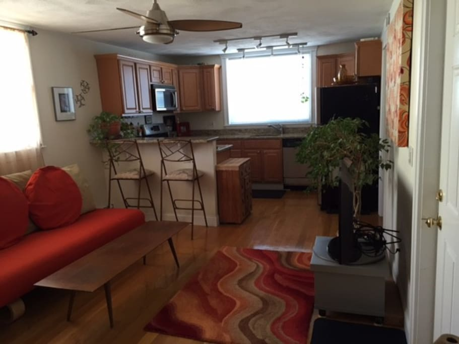 1 Bedroom Condo In South Boston Apartments For Rent In