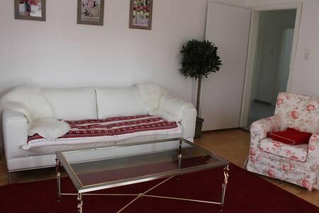 3-Zimmer Ferienwohnung am Elzdamm - Emmendingen