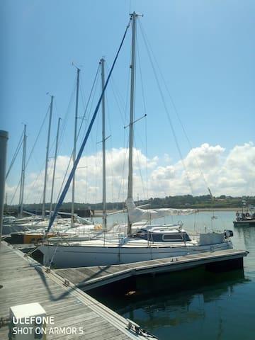 Insolite : bateau au port de Perros Guirec