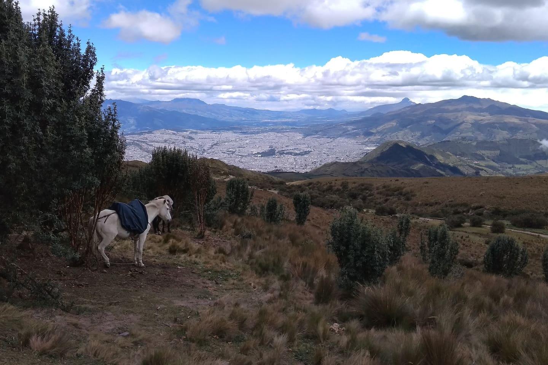 A 15 minutos del volcán Pichincha