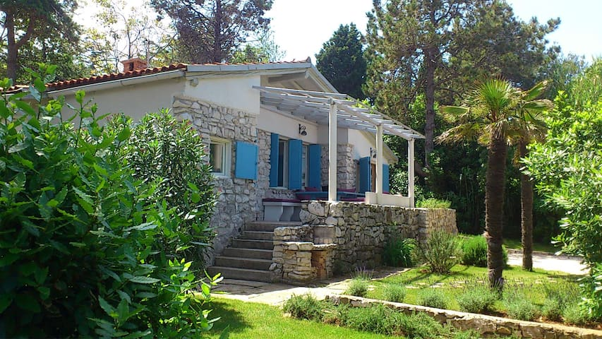Casa Alberi - Crveni Vrh - บ้าน