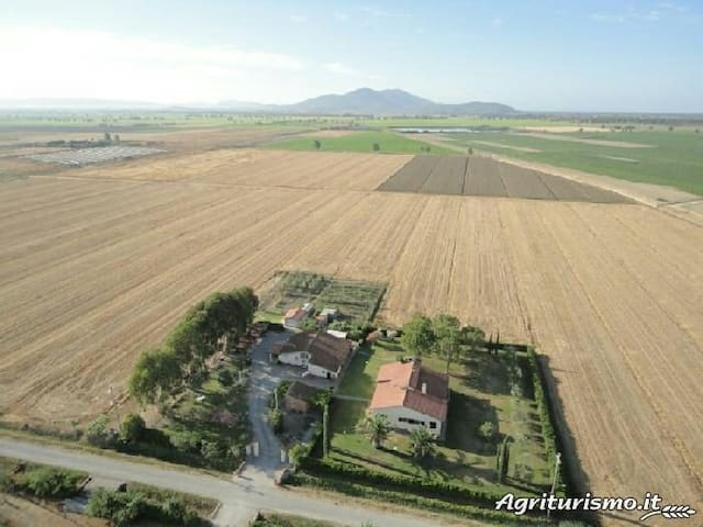 Agriturismo 4 km dal mare - Principina A Mare - Hus