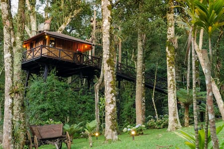 Cozy TreeHouse in Monte Verde - MG (Brazil) - Monte Verde - บ้านต้นไม้