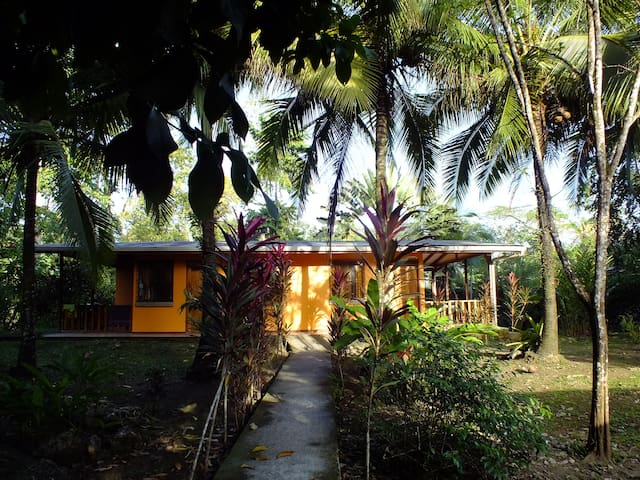 Caribe Luna Papaya apartment - Cahuita - Apartemen