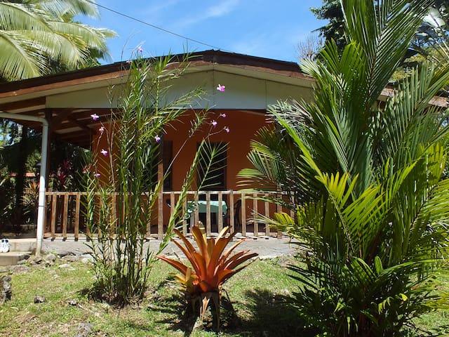 Caribe Luna Papaya room - Cahuita - Apartemen