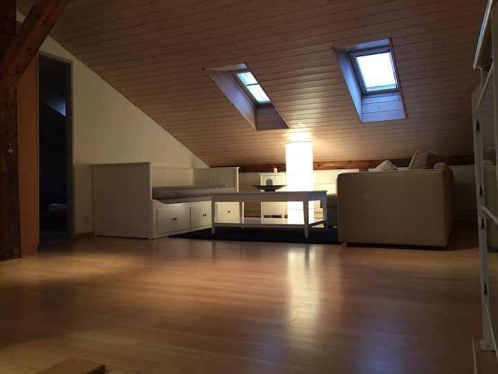 Gemütliche, luxuriöse Dachwohnung