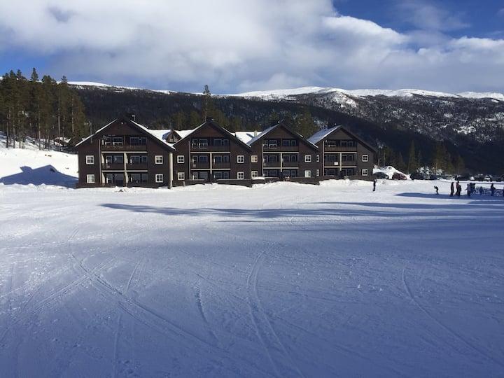 Koselig leilighet Uvdal ski inn/out