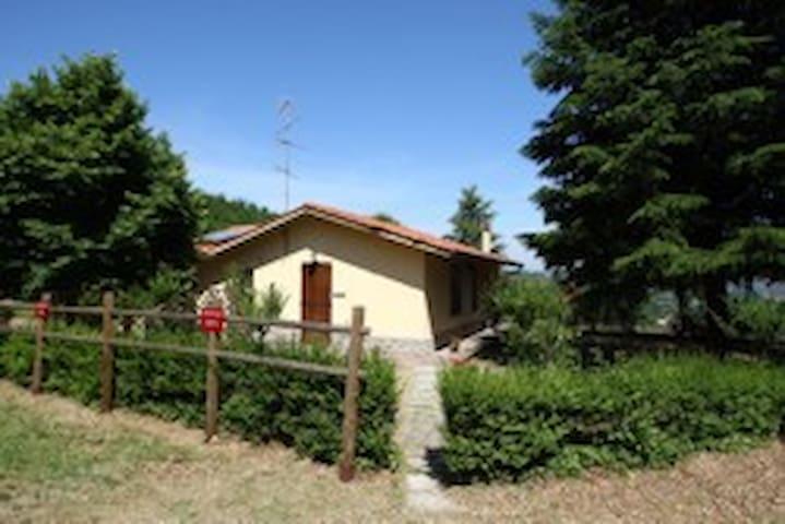 quercia - Arezzo