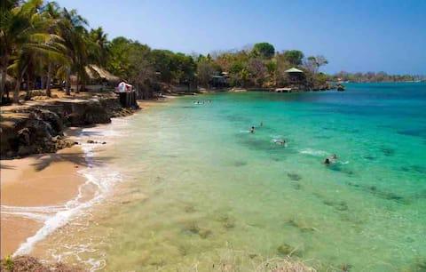Conéctate 🔌🌿 Maloka Surf  Beachfront 🏝
