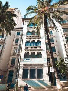 STUDIO en plein centre ville d'Alger