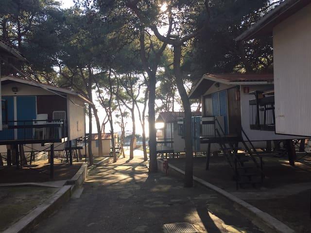 lido silvana bungalow sul mare  - Monti D'arena-bosco Caggione - Bungalou