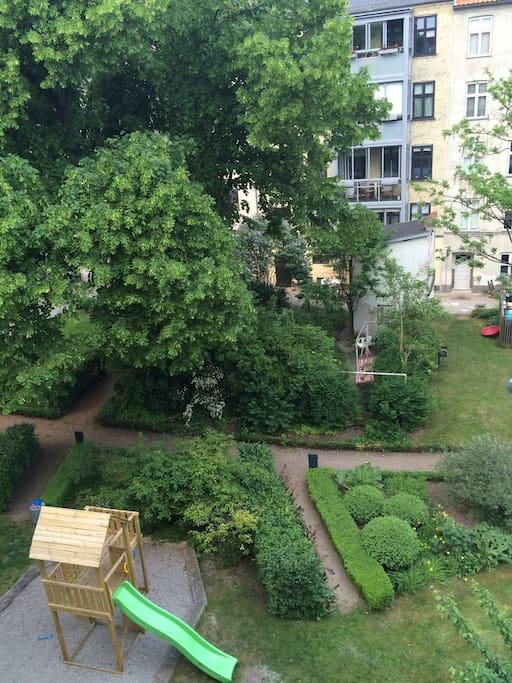 The beautiful courtyard