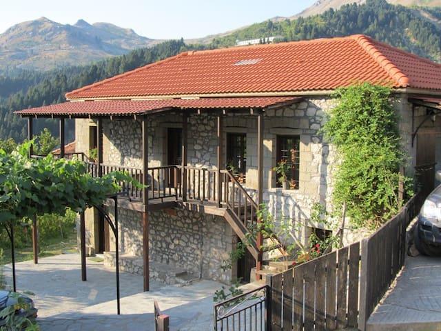 Μονοκατοικία στα Θεοδώριανα Άρτας - Theodoriana - Rumah
