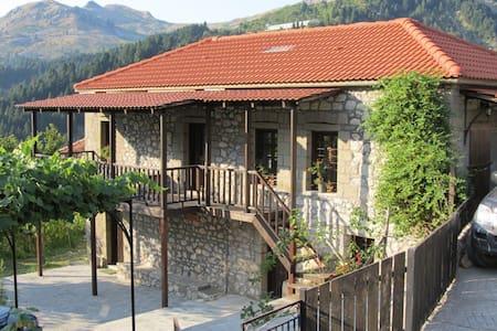 Μονοκατοικία στα Θεοδώριανα Άρτας - Theodoriana - Haus