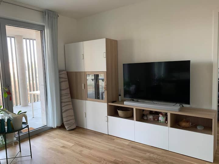 Bright new one bedroom apartment with huge balcony