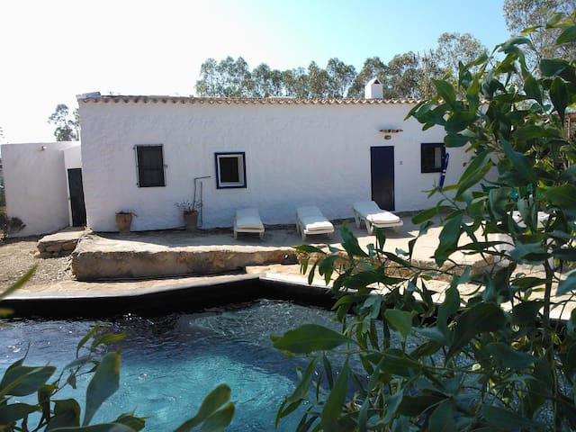 Traditional Formentera finca with own pool.