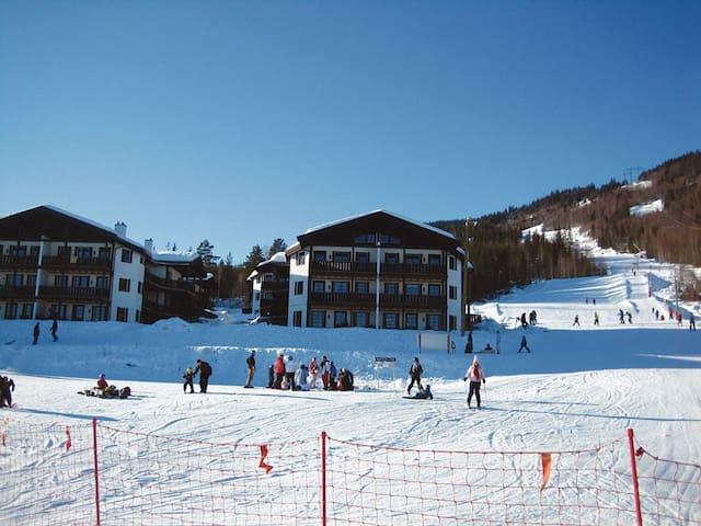 Bo ski INN/UT på Norefri, Norefjell