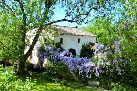 gite de charme en bord de Charente - Mosnac - Rumah