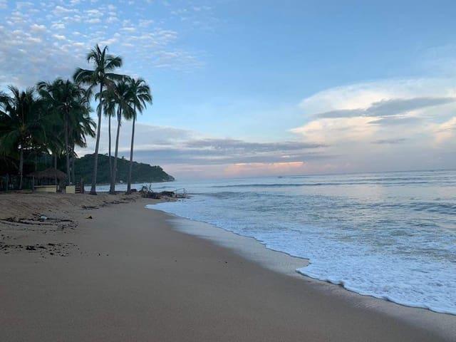 Beach Quimixto/ Orchids
