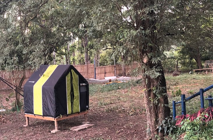 One Family Farm - Camping Tent