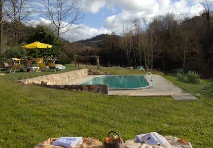 Chianti Classico Countryhouse  2 - Montaione - Villa