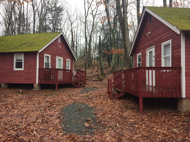 Cabin #2 in the Rustic Poconos Lodge - Hawley - Cabana