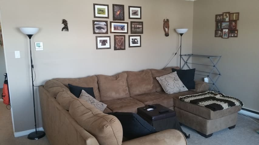 1 room in a 2/1 near downtown - Guelph - Apartment