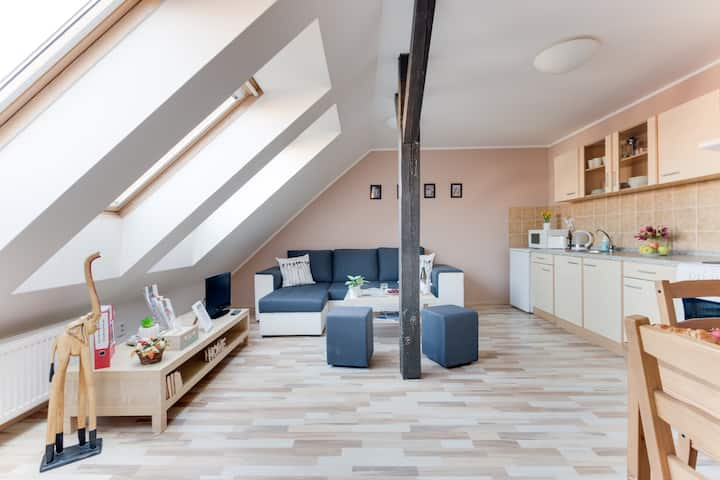 Jane's Attic Apartment 1, easy access to centre